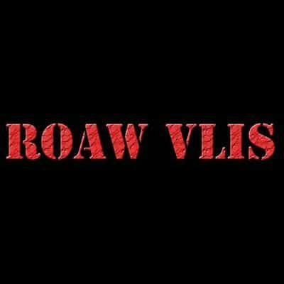 Pop/Rockband Raw Vlis
